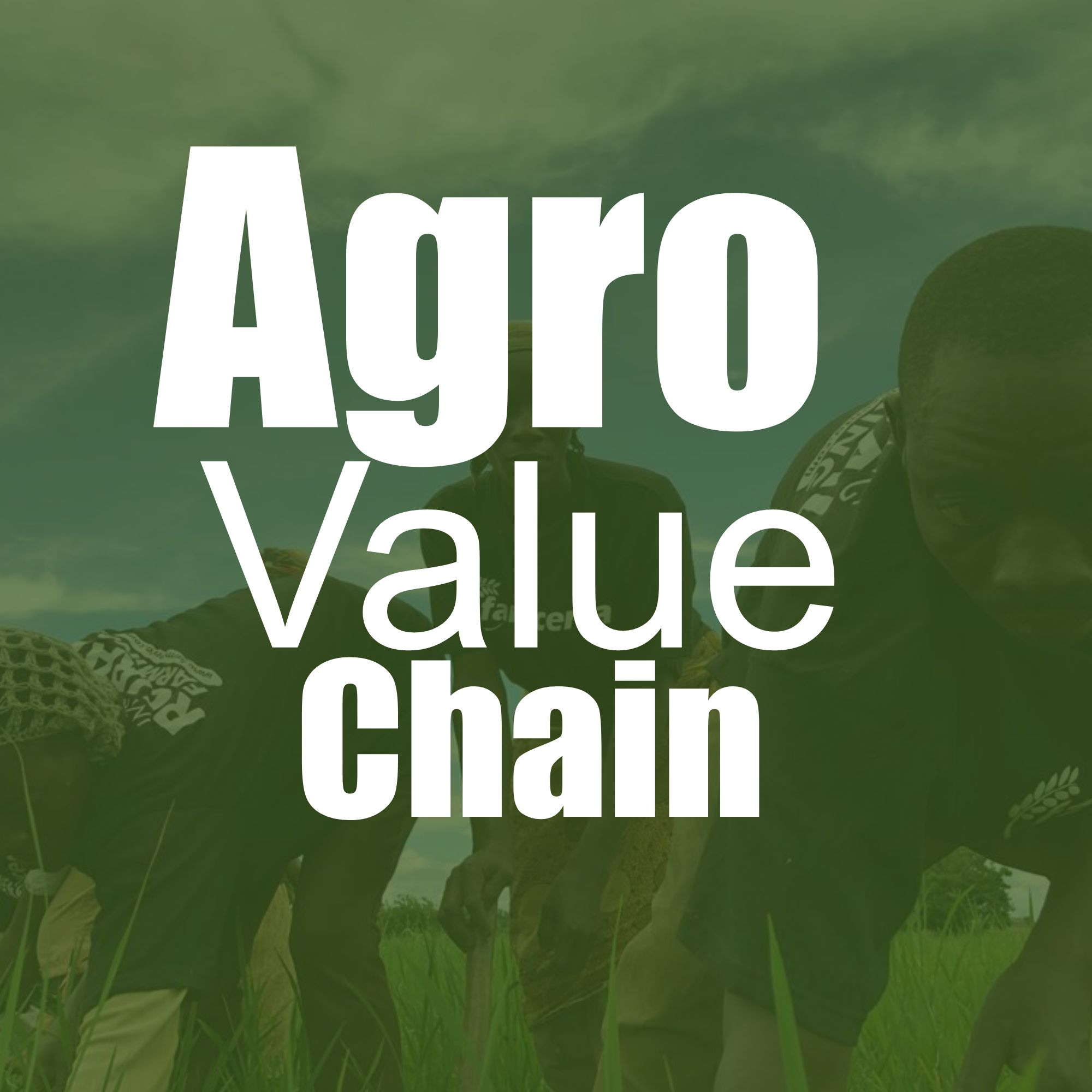 Agro Value Chain