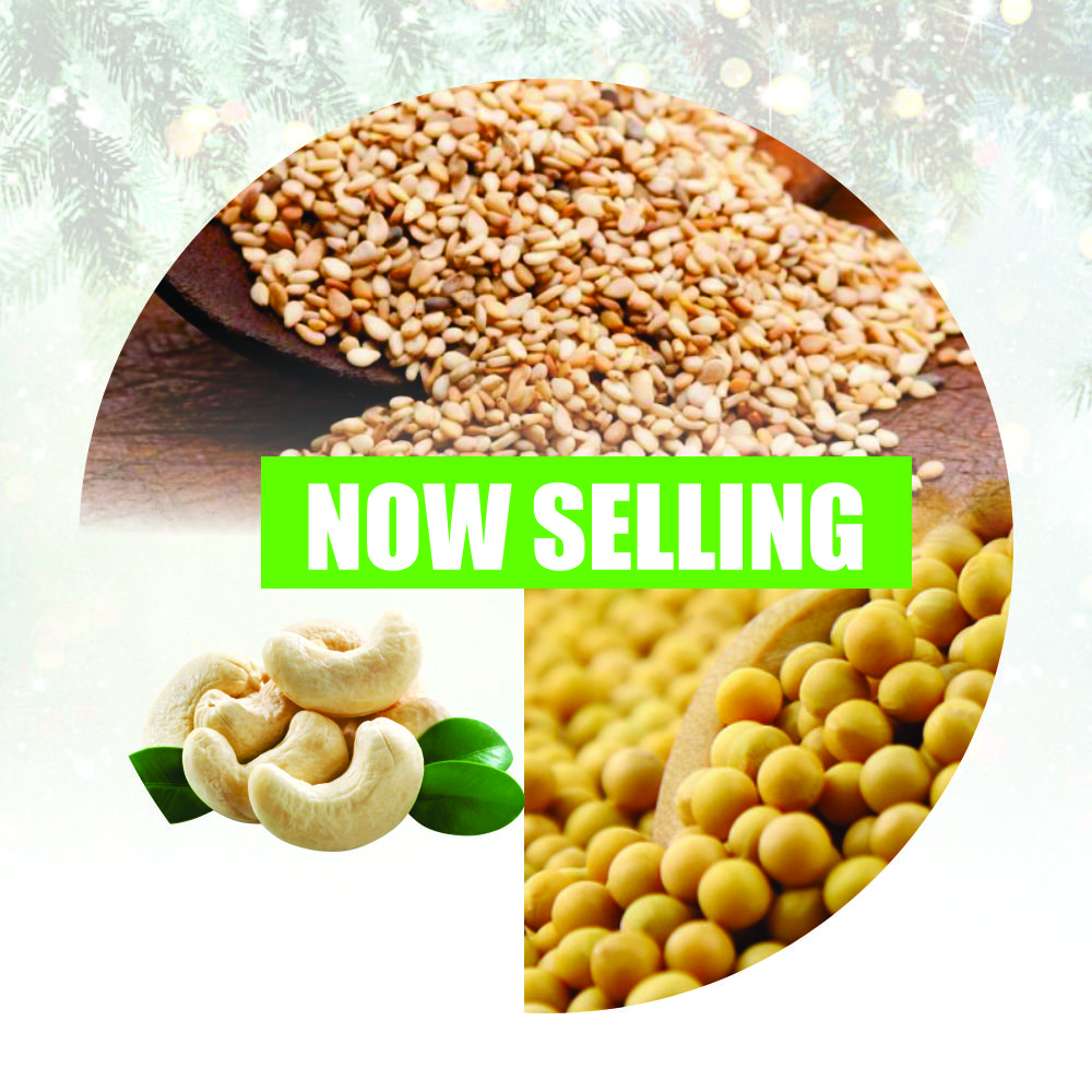 Commodity Trading - Jollof December